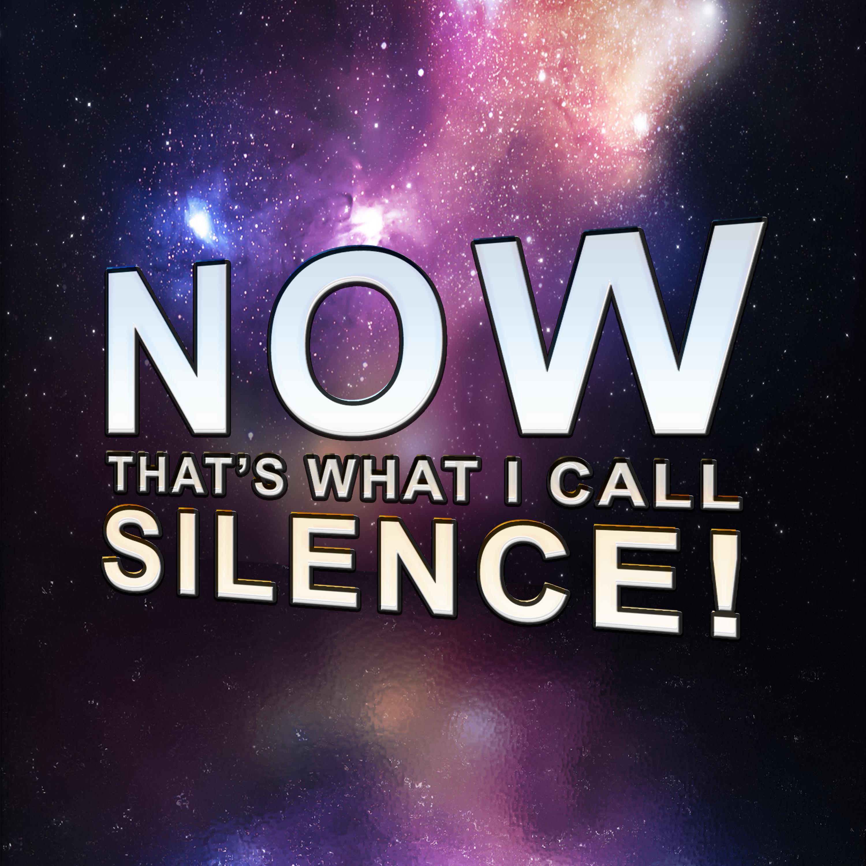 NowThatsWhatICallSilence